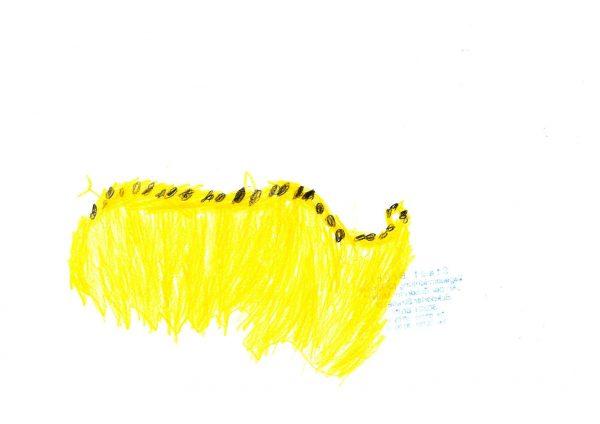 Zoo-Malwettbewerb: Malte Jakobs