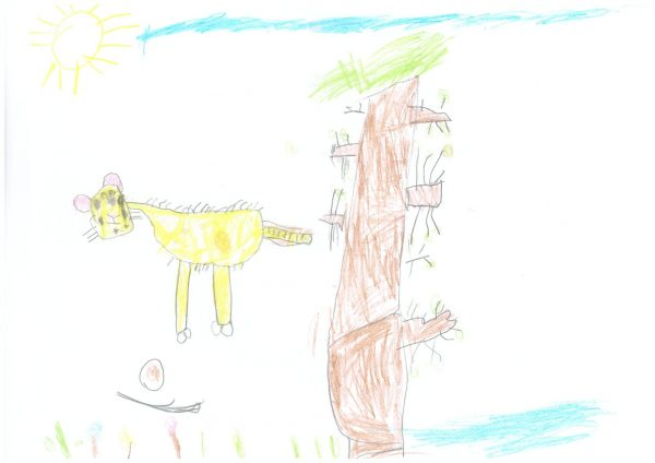 Zoo-Malwettbewerb: Felip Vicent Senter Resewde