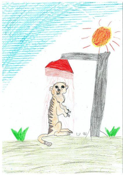 Zoo-Malwettbewerb: Louisa Fischer