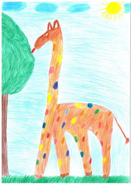 Zoo-Malwettbewerb: Julian Stenzel