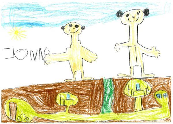 Zoo-Malwettbewerb: Jona Rohrbach