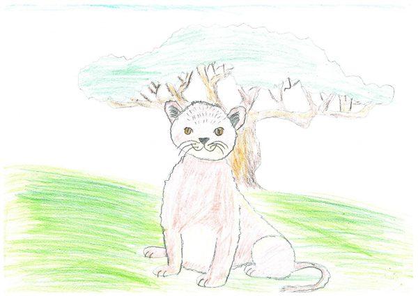 Zoo-Malwettbewerb: Fimm Yoma Reichardt
