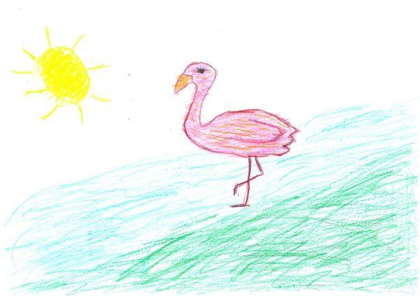 Zoo-Malwettbewerb: Ariella Rizzo