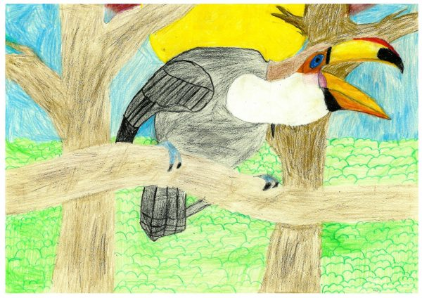 Zoo-Malwettbewerb: Hendrik Liese