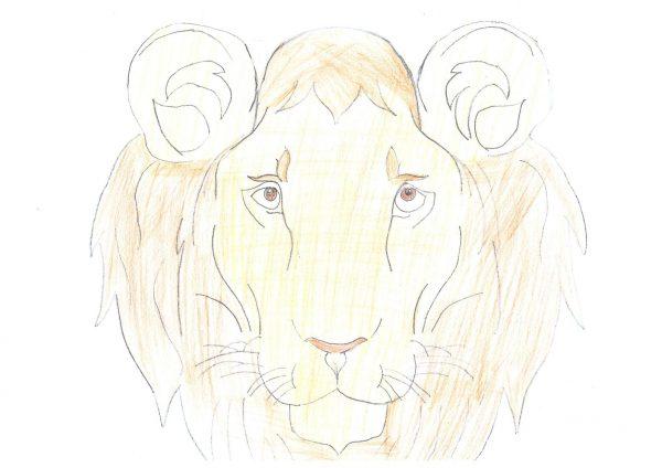 Zoo-Malwettbewerb: Ceyda Taka