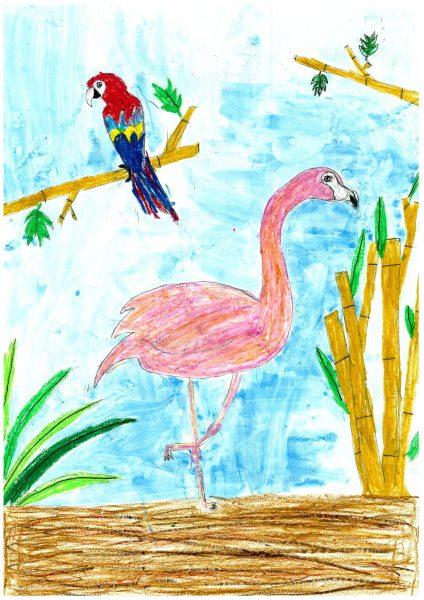 Zoo-Malwettbewerb: Rosalie Steinhoff