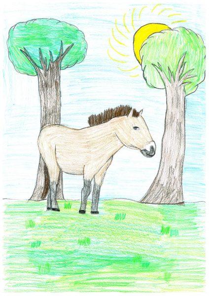 Zoo-Malwettbewerb: Antonia Liese