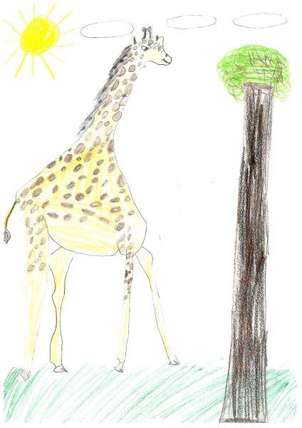 Zoo-Malwettbewerb: Nele Sofie Reichardt